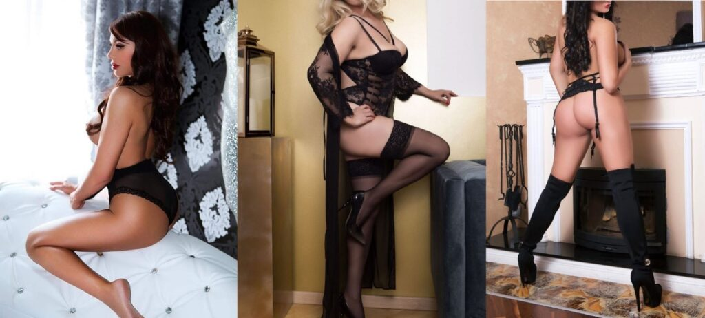 Highclass Outcall escort agency Vienna Florentina Sandra Lea